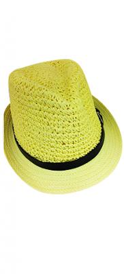 fedora-hat